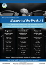 the-sports-academy-gym-posters-01-03.jpg